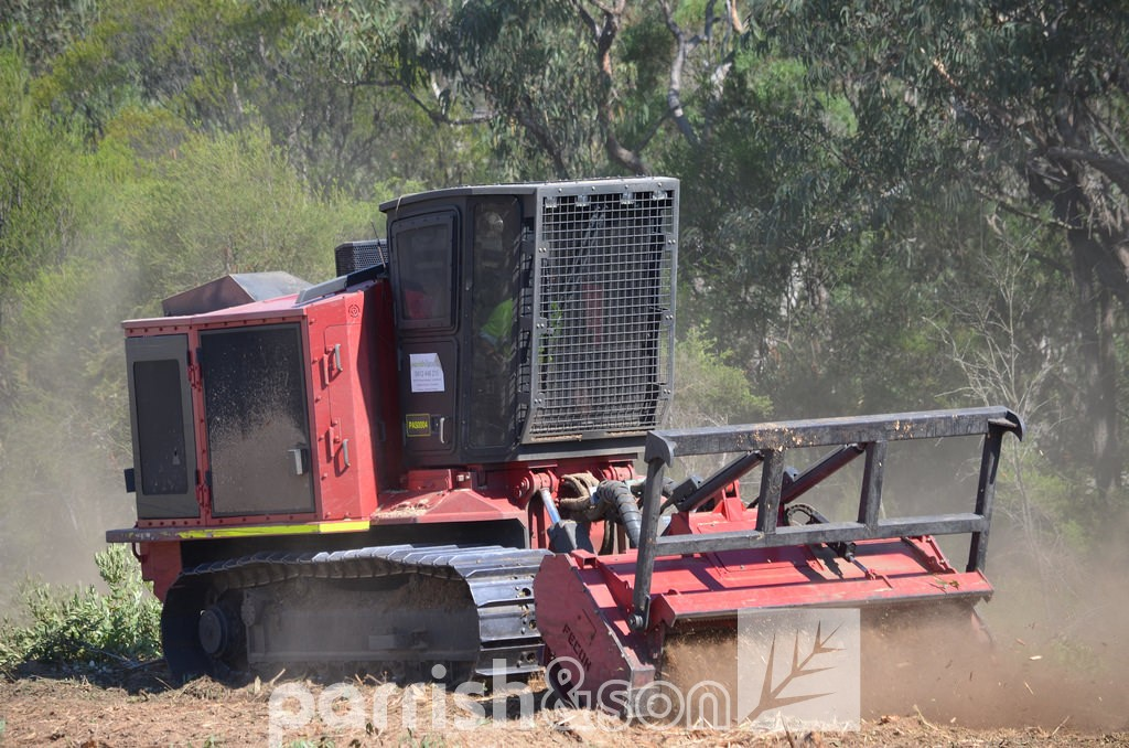 Fecon 600 Land Clearing